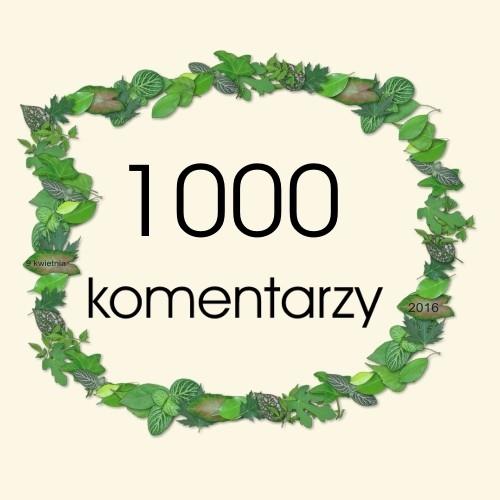 1000-mago