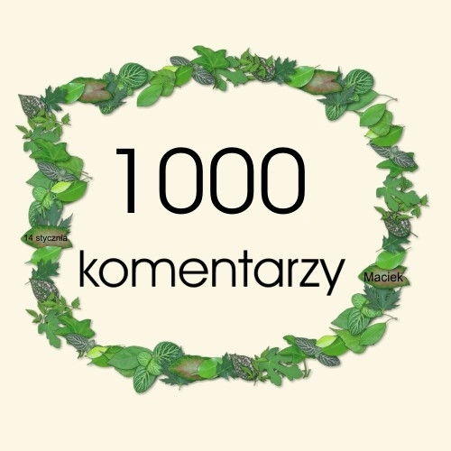 1000_maciek